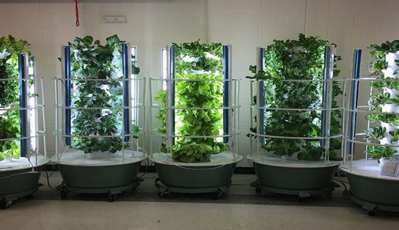 آینده کشاورزی