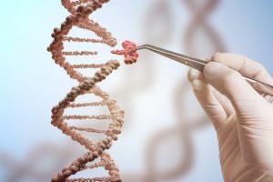 آینده فرا انسانی ما، دستکاری ژن ها