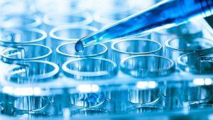 آینده فرا انسانی ما، سلول های بنیادی