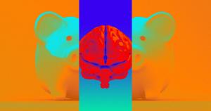 زنده نگه داشتن مغز خوک پس از مرگ